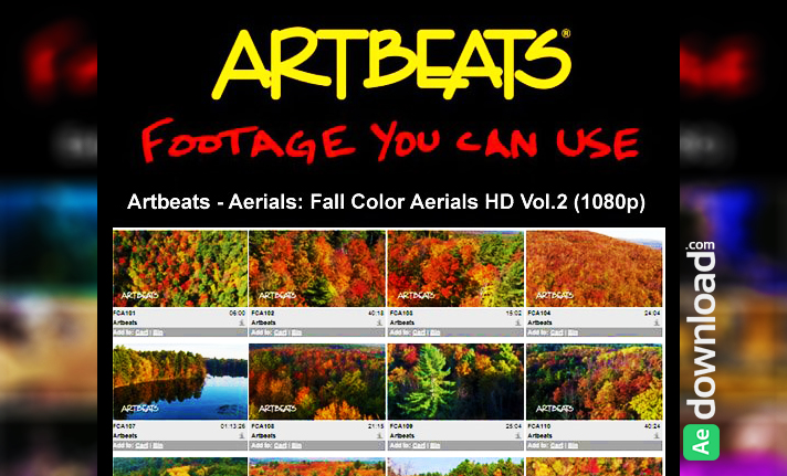 ARTBEATS - AERIALS FALL COLOR AERIALS HD VOL.2 (1080P)