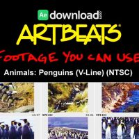 ARTBEATS – ANIMALS PENGUINS (V-LINE) (NTSC)