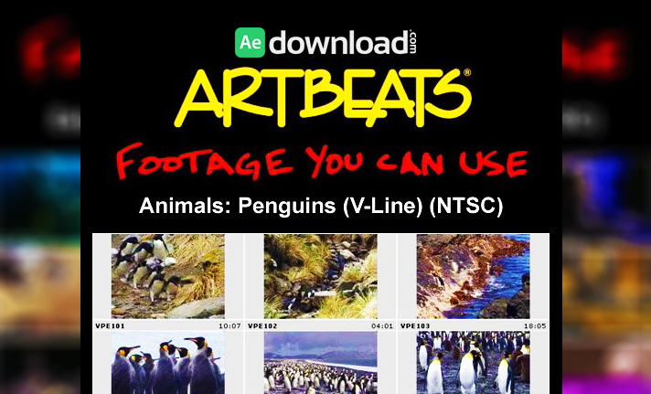 ARTBEATS - ANIMALS PENGUINS (V-LINE) (NTSC)