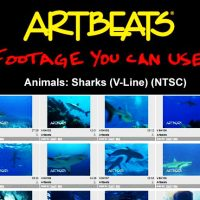 ARTBEATS – ANIMALS SHARKS (V-LINE) (NTSC)