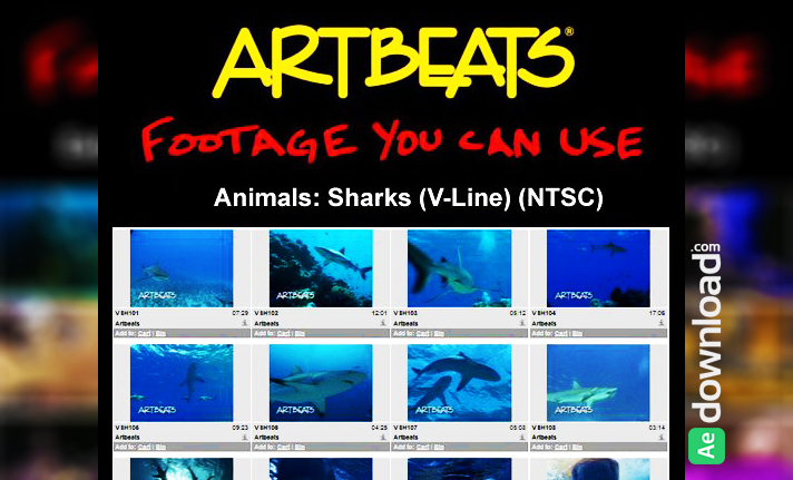 ARTBEATS - ANIMALS SHARKS (V-LINE) (NTSC)