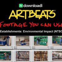 ARTBEATS – ESTABLISHMENTS ENVIRONMENTAL IMPACT (NTSC)