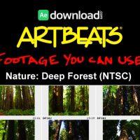 ARTBEATS – NATURE DEEP FOREST (NTSC)