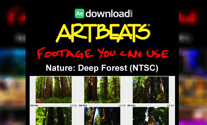 ARTBEATS - NATURE DEEP FOREST (NTSC)