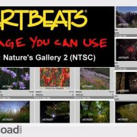 ARTBEATS – NATURE NATURE'S GALLERY 2 (NTSC)