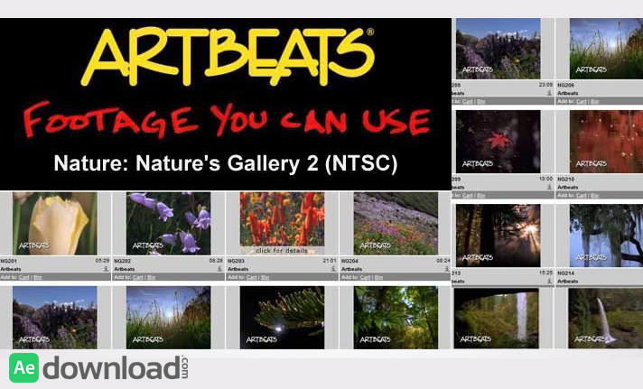ARTBEATS - NATURE NATURE'S GALLERY 2 (NTSC)