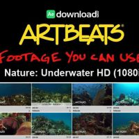 ARTBEATS – NATURE: UNDERWATER HD (1080P)