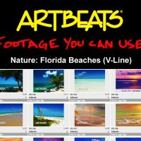 ARTBEATS – NATURE FLORIDA BEACHES (V-LINE) (NTSC)