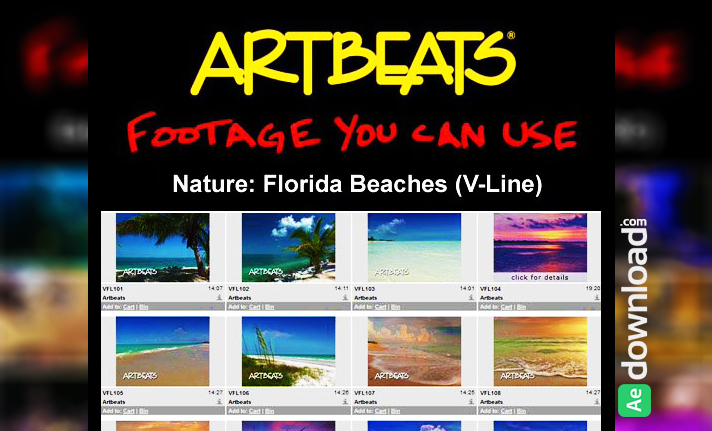 Free Download Artbeats Fooage - Nature Florida Beaches (V-Line) (NTSC)