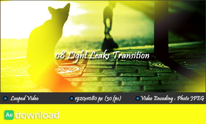 Light Leaks Transition free download