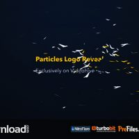 PARTICLES LOGO REVEAL TOOLKIT FREE DOWNLOAD