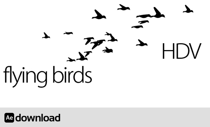 flying birds free download