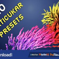VIDEOHIVE 20 PARTICULAR PRESETS – MAGIC PACK – FREE DOWNLOAD