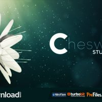 FLOWER LOGO (VIDEOHIVE) – FREE DOWNLOAD