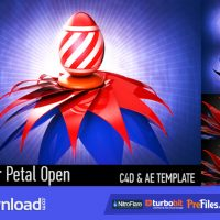 VIDEOHIVE FLOWER PETAL OPEN – FREE DOWNLOAD