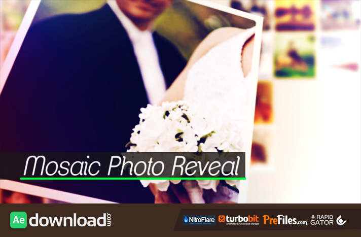 Mosaic Photo Reveal Free Download After Effects Templates