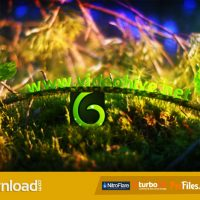SPRING LEAVES LOGO (VIDEOHIVE PROJECT) – FREE DOWNLOAD