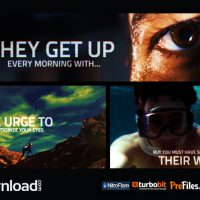 THE VIDEOHIVERS (VIDEOHIVE PROJECT) – FREE DOWNLOAD