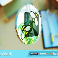 FLIPPED COIN LOGO REVEAL (VIDEOHIVE PROJECT) FREE DOWNLOAD