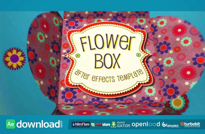 Flower Box Display