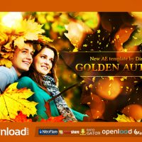 GOLDEN AUTUMN VIDEOHIVE TEMPLATE