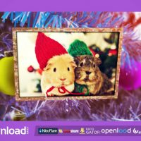 NEW YEAR PHOTO ALBUM FREE DOWNLOAD VIDEOHIVE TEMPLATE