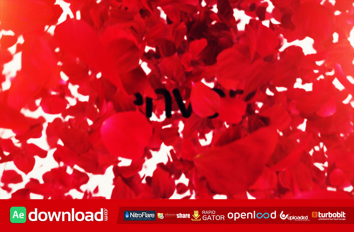 Petals Logo Reveal II free download (videohive template)