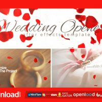 WEDDING OPENER (VIDEOHIVE PROJECT) FREE DOWNLOAD
