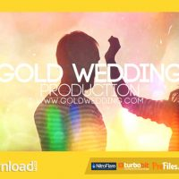 WEDDING PRODUCTION (VIDEOHIVE PROJECT) FREE DOWNLOAD