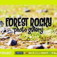 FOREST ROCKY PHOTO GALLERY – FREE AFTER EFFECTS PROJECT (VIDEOHIVE)