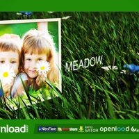 MEADOW – AFTER EFFECTS PROJECT (VIDEOHIVE)