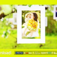 PHOTO GALLERY BLOSSOMS AND BEES – FREE AFTER EFFECTS PROJECT (VIDEOHIVE)