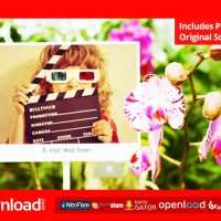 PHOTO GALLERY WITH SUNNY FLOWERS – AFTER EFFECTS PROJECT (VIDEOHIVE)