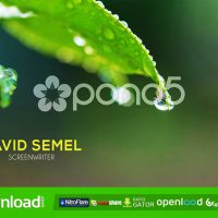 SIMPLE LOWER THIRD FREE DOWNLOAD POND5 TEMPLATE