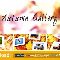 AUTUMN GALLERY – AFTER EFFECTS PROJECT (VIDEOHIVE)