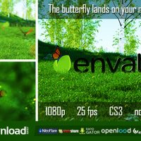 BUTTERFLY LOGO REVEAL 6735223 – FREE AFTER EFFECTS PROJECT (VIDEOHIVE)