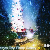 CHRISTMAS TREE PHOTO GALLERY – AFTER EFFECTS PROJECT (VIDEOHIVE)