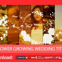 FLOWER GROWING WEDDING TITLE – FREE AFTER EFFECTS PROJECT (VIDEOHIVE)