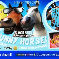 FUNNY HORSE OPENER – AFTER EFFECTS PROJECT (VIDEOHIVE)