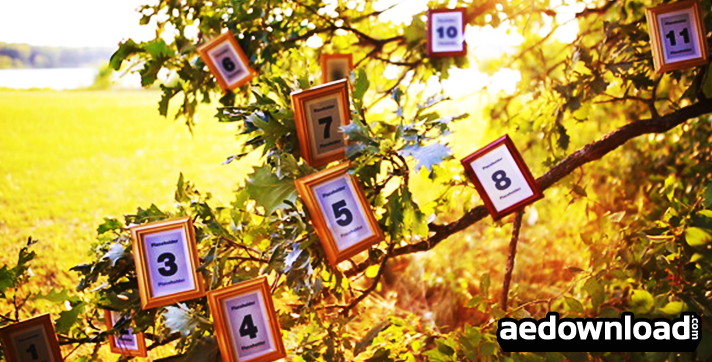 Magic Tree Photo Slideshow