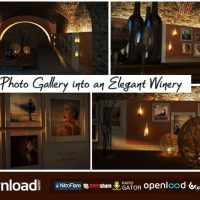 PHOTO GALLERY IN AN ELEGANT WINERY – VIDEOHIVE