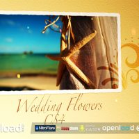 WEDDING FLOWERS CS4 – AFTER EFFECTS PROJECT (VIDEOHIVE)