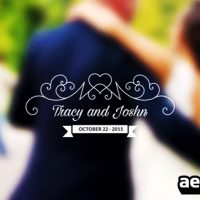 WEDDING TITLES VOL 4 – AFTER EFFECTS TEMPLATE (MOTION ARRAY)