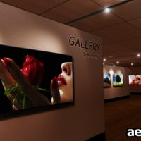 AE VIRTUAL GALLERY V 1.0 – FREE DOWNLOAD VIDEOHIVE
