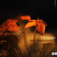 FLOWERS CS4 – AFTER EFFECTS PROJECT (VIDEOHIVE)