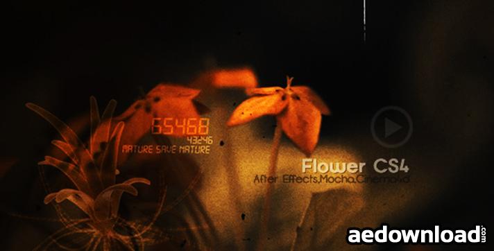 Flowers CS4