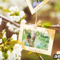 PHOTOS HANGING IN AN ORCHARD – AFTER EFFECTS PROJECT (VIDEOHIVE)