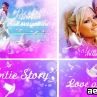 LOVE AND DOVES – AFTER EFFECTS PROJECT (VIDEOHIVE)