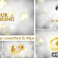 OUR WEDDING – THE COMPLETE PACK – AFTER EFFECTS PROJECT (VIDEOHIVE)