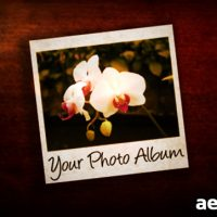 PHOTO ALBUM 36108 – AFTER EFFECTS PROJECT (VIDEOHIVE)